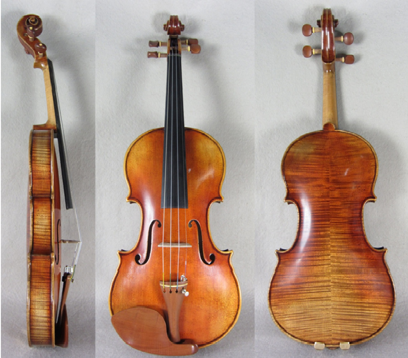 Soil strad austrian1 strings2u for Soil 1714 stradivarius